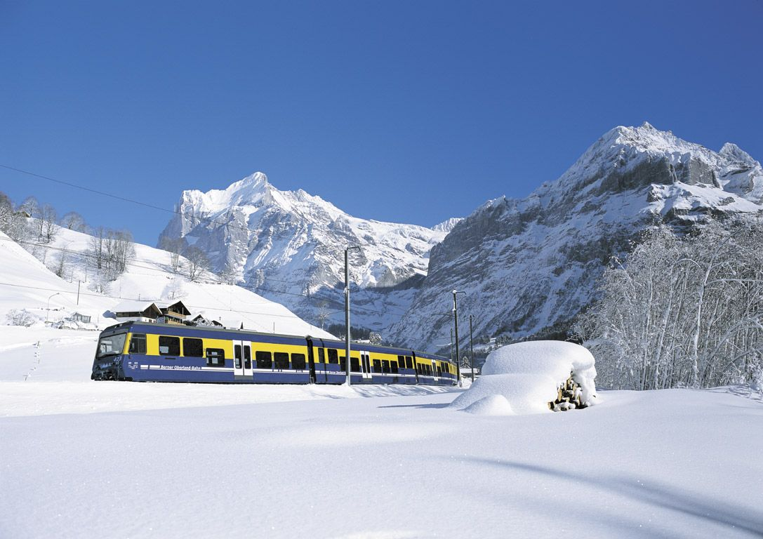Don't Go Off the Rails: The Benefits of Train Holidays