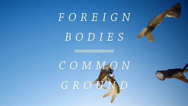 Foreign Bodies, Common Ground Exhibition in Regents Park 2014