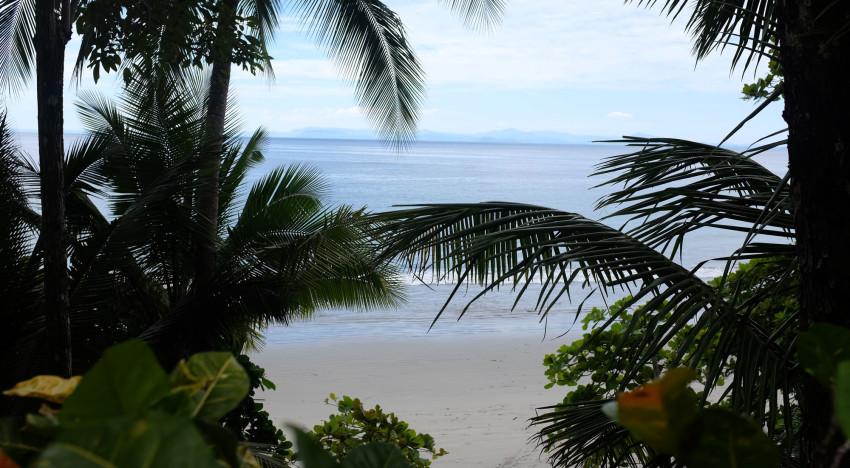 Mi Viva en Costa Rica