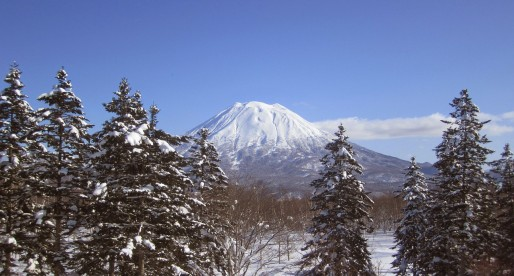 Why Your Next Trip Should be to Niseko